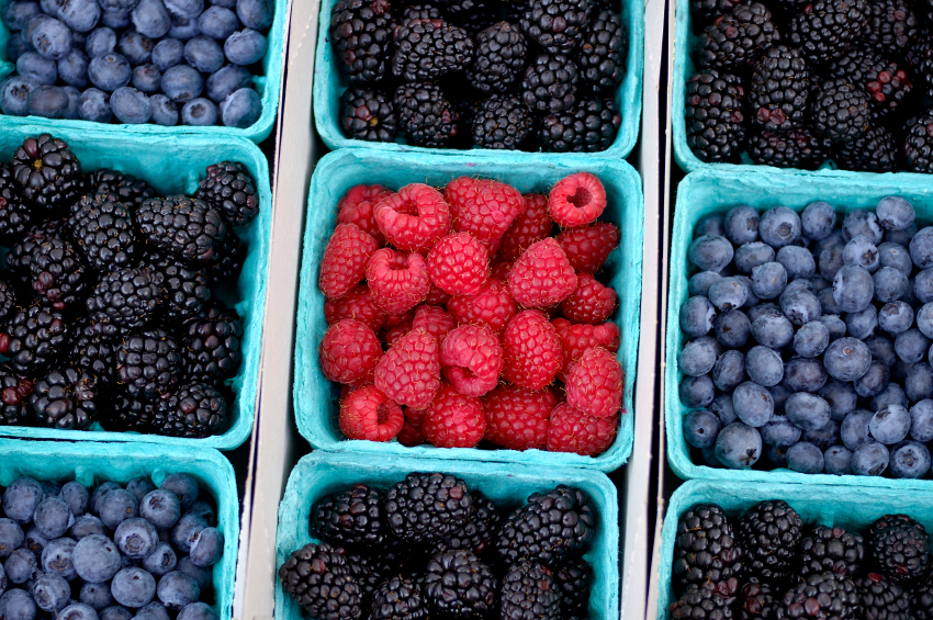 Flavonoids Include Red Purple Or Blue Anthocyanins As Well White Pale Yellow Compounds Such Rutin Quercetin And Kaempferol